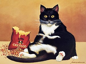 Lowell Herrero Black Cats